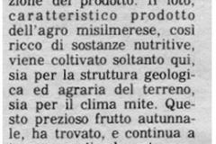 1982-novembre-12-Giornale-di-Sicilia