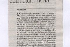 2015-maggio-31-la-Repubblica